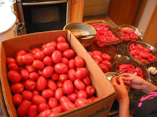 making tomato sauce: prep | by Andrew Huff