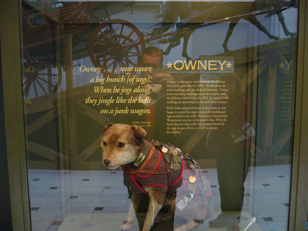 Where Was Owney The Dog S Body Found