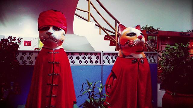 https://foursquare.com/v/muzium-kucing-cat-museum/4c5f89f954ac0f47cecfb321 #holiday #travel #ASIA #Malaysia #Sarawak #catcity #Kuching #度假 #旅行 #亚洲 #马来西亚 #沙拉越 #猫城 #古晋