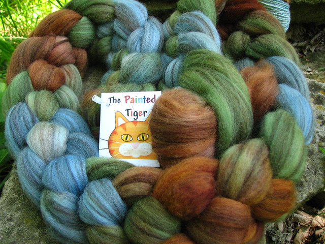 Mount Saint Helens - May Tiger Club - Mixed Merino Wool Top