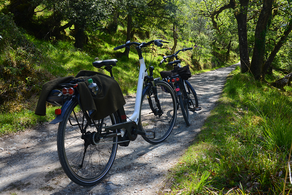 Grass Routes Kalkhoff E-Bike