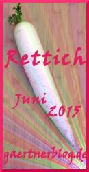 Garten-Koch-Event Juni 2015: Rettich [30.06.2015]