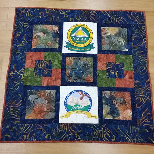 """So pleased with how this little wall hanging turned out. I have the binding machine sewn on the king size quilt and am ready to hand sew 420"""" of binding down."""
