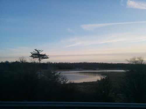 Marshes of the Cataraqui (3)