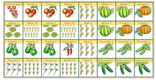 Coppertop Garden Plan 2015