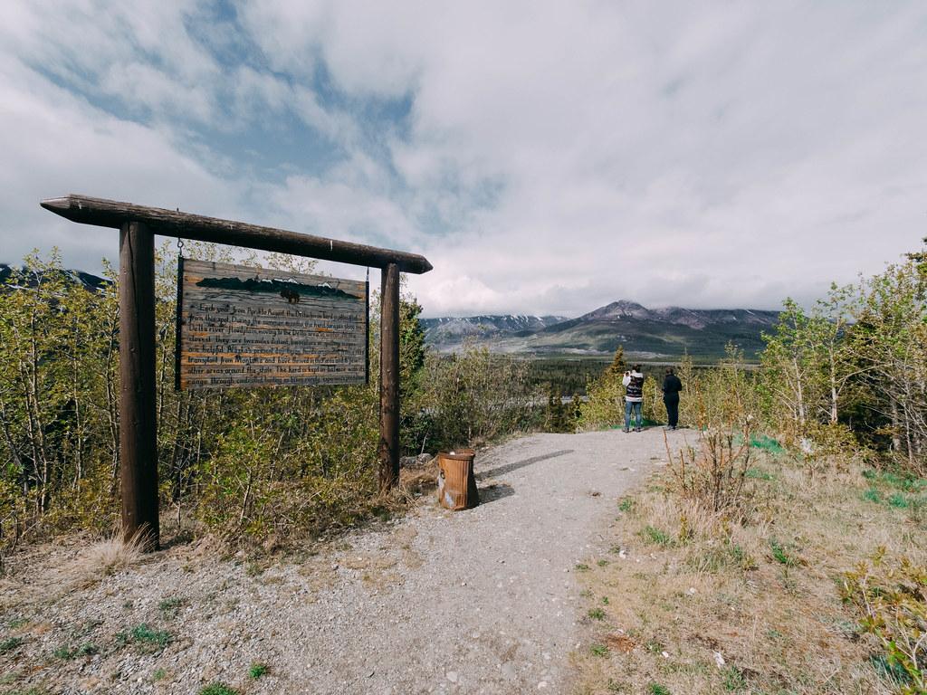 Road to Denali-5