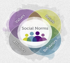 social norms visual