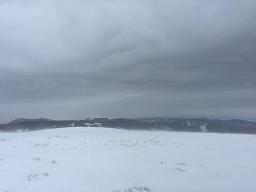 Winter hike in Feldberg area, Black Forest, Baden, Germany