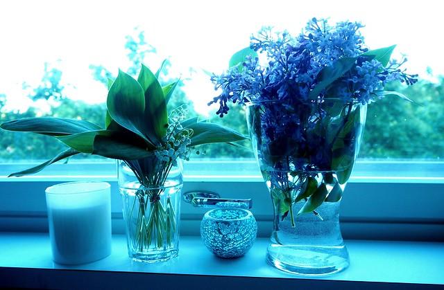 kevätkukat3 kesä, Kevätkukat2 kesä, luonto, nature, kesä, summer, suomi, finland, kukat, kukka, metsä, forest, flower, flowers, syreeni, sireeni, purple, violetti, valkoinen, white, kielo, lily of the valley, summer days, kesä päivät, poimia kukkia, luonnosta, luonnon helma,