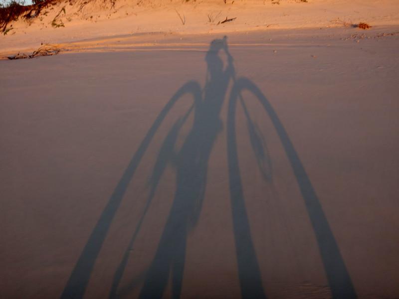 Dawn Shadow
