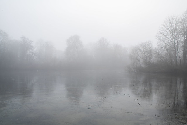 Freezing fog, Kingston Maurward