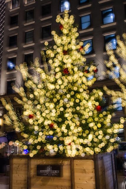 京橋エドグランのクリスマスツリーの写真