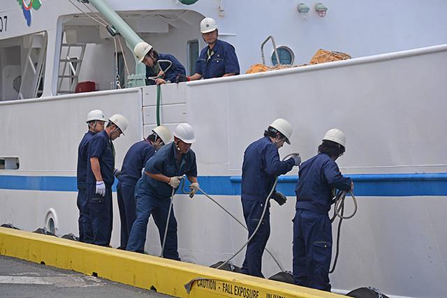 Fukushima Maru adjusting fenders