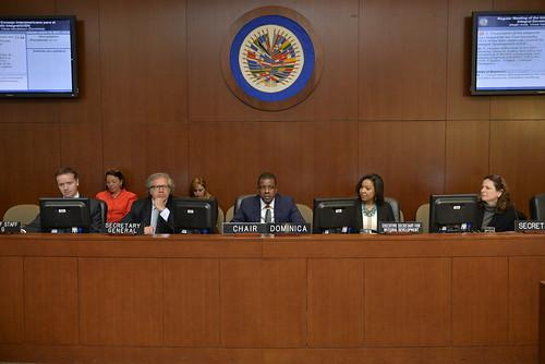 Consejo Interamericano para el Desarrollo Integral de la OEA inaugura presidencia de Dominica y confirma nueva Secretaria Ejecutiva para el Desarrollo Integral