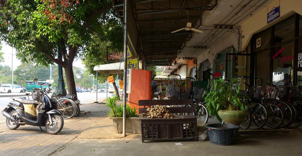 Thaïlande - Ayutthaya - 111 - Chicken noodles