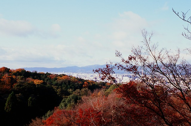 A view from the Kiyomizu Stage