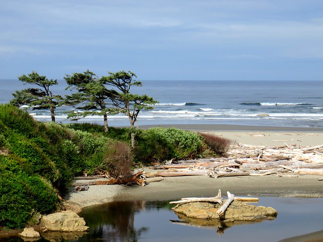 Kalaloch Lodge View