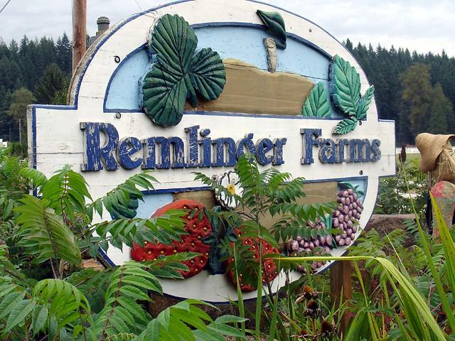 remlinger farm carnation