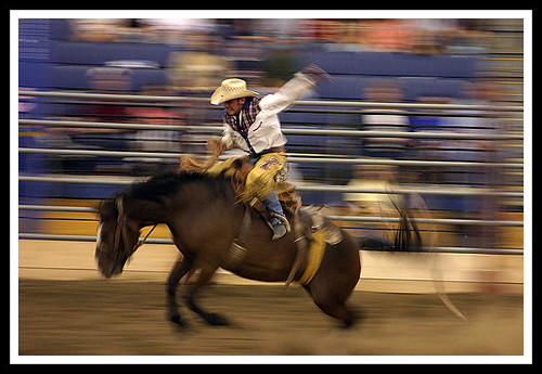 Rodeo USA | by ReneS