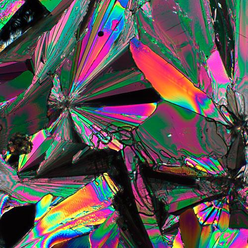 Vitamin C Crystals Polarized Light Microscopy Tracy