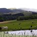 Tuki Tuki Valley, Hawkes Bay, New Zealand, 22 November 2005