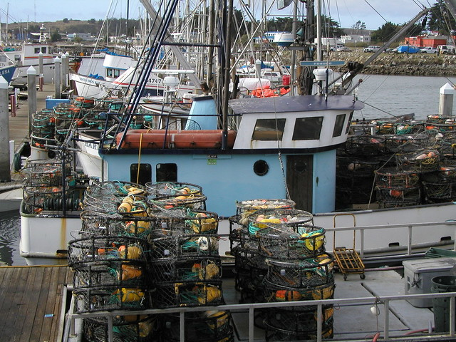 Crab fishing boats at half moon bay fishing boats at for Half moon bay fishing report