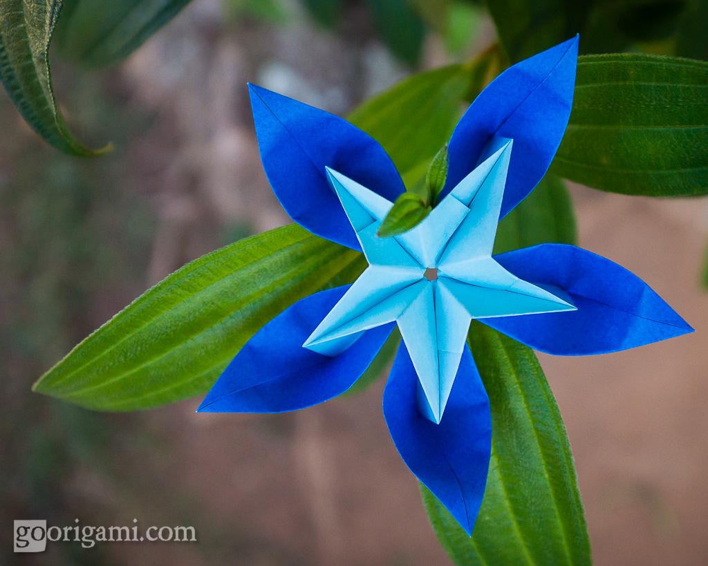 Modular Origami Flower Origami Flower Maria Sinayskaya R Flickr