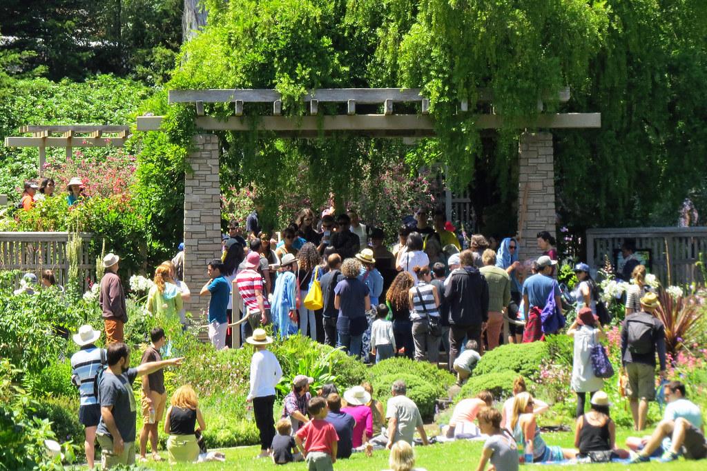 ... Crowd At Zellerbach Garden During 12 Day Flower Piano Event Botanical  Garden San Franciscou0027s Golden Gate