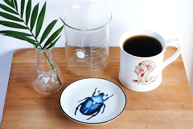 Biology-inspired kitchen stuff