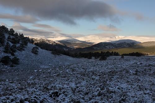 Beinn a' Bhuird above Ballochbuie Forest