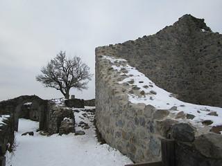 1553 Wanderbild