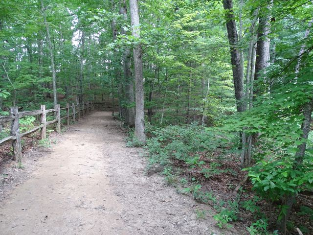 Arboretum Hiking Trails ~ From My Carolina Home