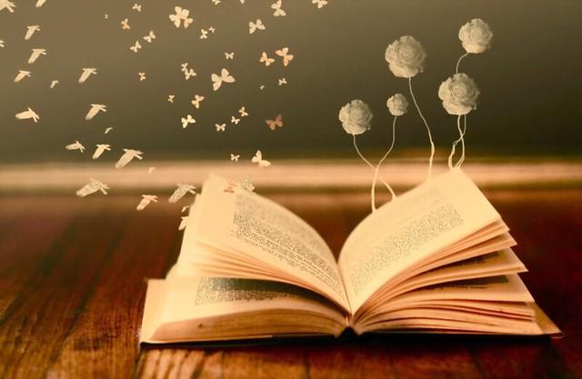 libros-santa-fe