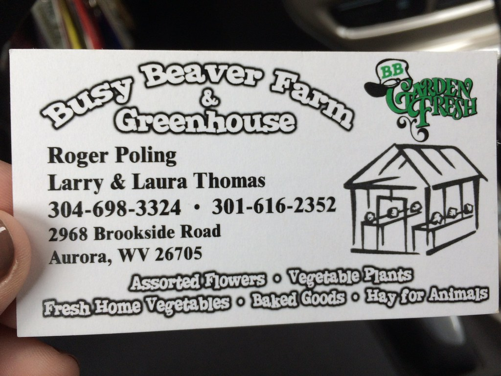 Busy Beaver Farm