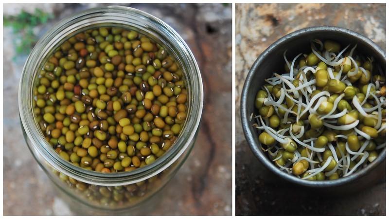 Sprouts Kosambari