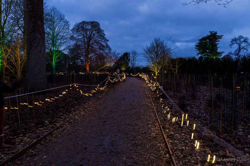 The Christmas Light trail