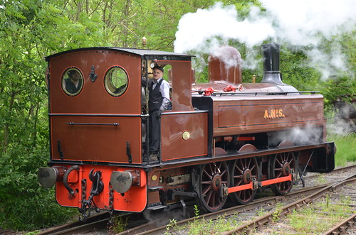 Tanfield Railway June 15 (7)