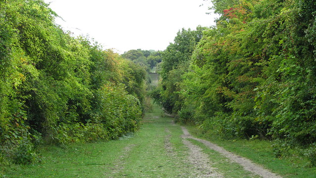 The long trail to Chinnor
