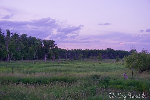 Dusk along the Minnesota River