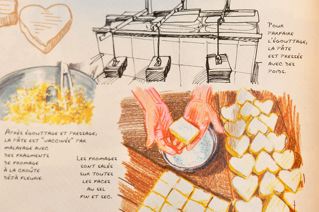 """Französischer Käse ... Buch: """"Au Coeur de la France des 1000 fromages"""""""