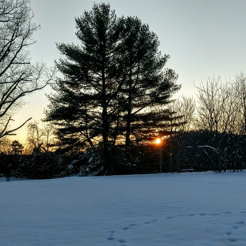 Sunset on the first snow of the year | by WolfSilverOak