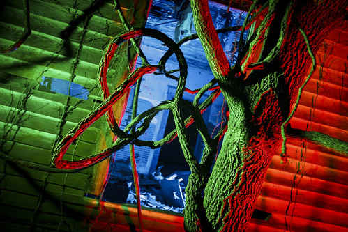 Boonville Missouri Photographer, Cooper County Missouri Photography, Fine Art Photographer, Fine Art Photo, Fayette MO Photographer, Fayette MO photo, Light Painting, Boonville Missouri, 2017, abandoned, tree, tangle, bramble, window, Notley, Notley Hawkins, missouri, http://www.notleyhawkins.com/, Missouri Photography, Notley Hawkins Photography, outdoor, architecture class=