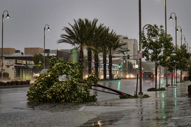 Rainstorm Firestone Blvd.