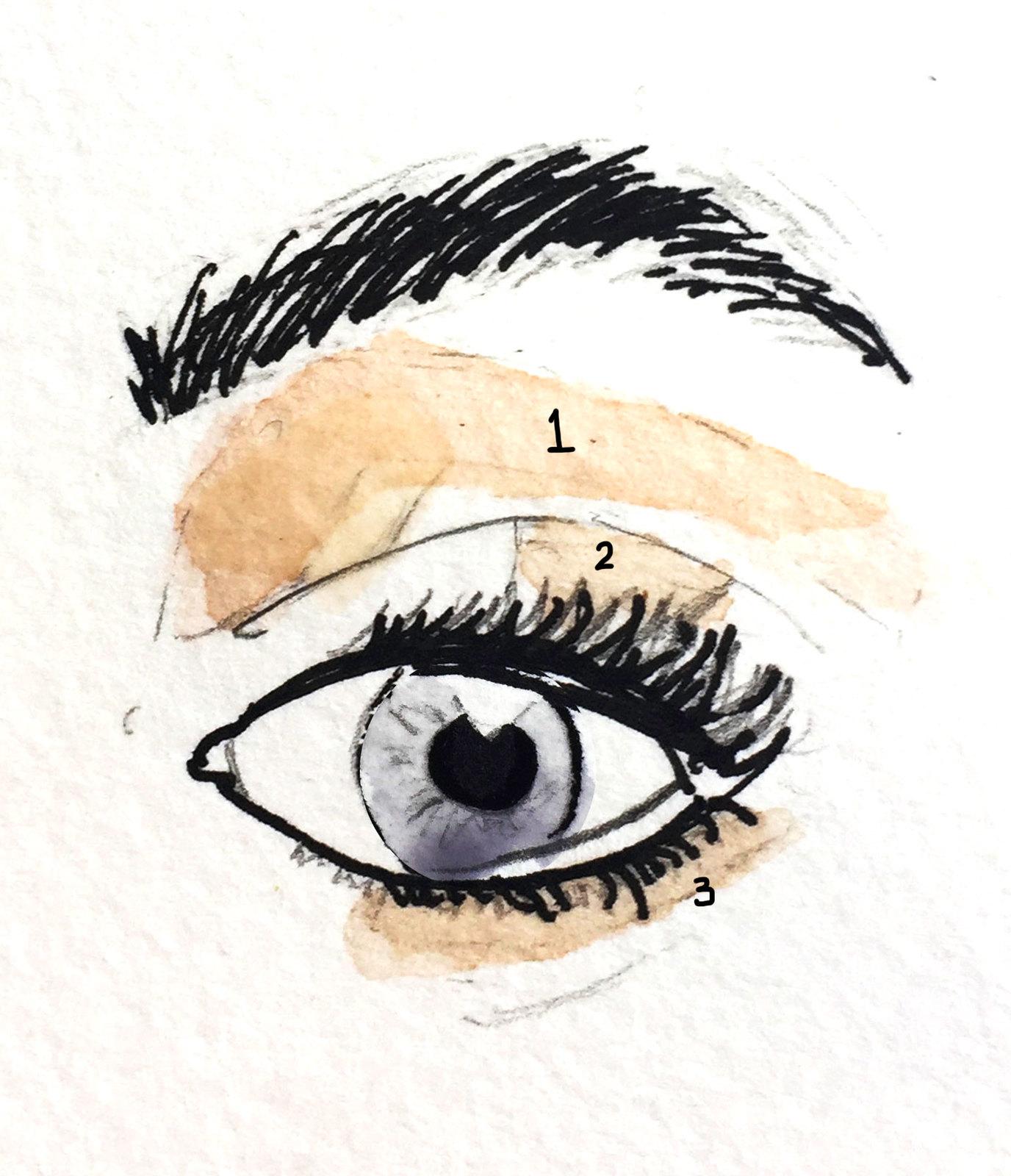Cómo aplicar sombras en mi ojo
