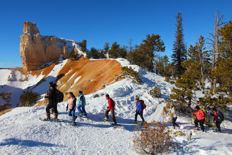 IMG_9113 Ranger-Led Snowshoe Walk