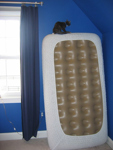 Jade climbs an air mattress | by cbowns