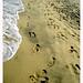 Beach Barfoot
