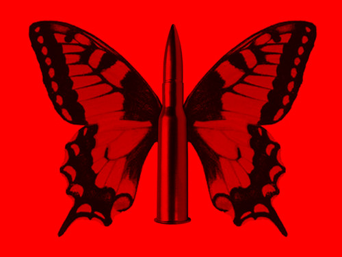 Image result for Butterfly or Bullet