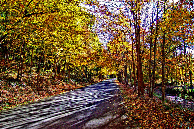 Owl Creek Road Flickr Photo Sharing
