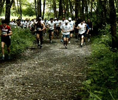 mountain trail running king county parks your big backyard flickr